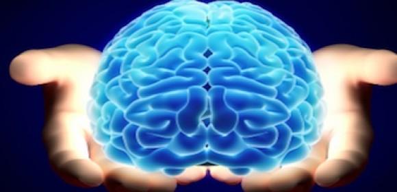 If Understanding Neurology Can Soften a Judge, How About a Parent?